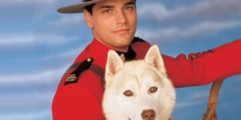 """*waves hand in front of face* """"He's so adorable, it more like I want to marry him and have kids, and have Diefenbaker as our family dog...""""Due South"""